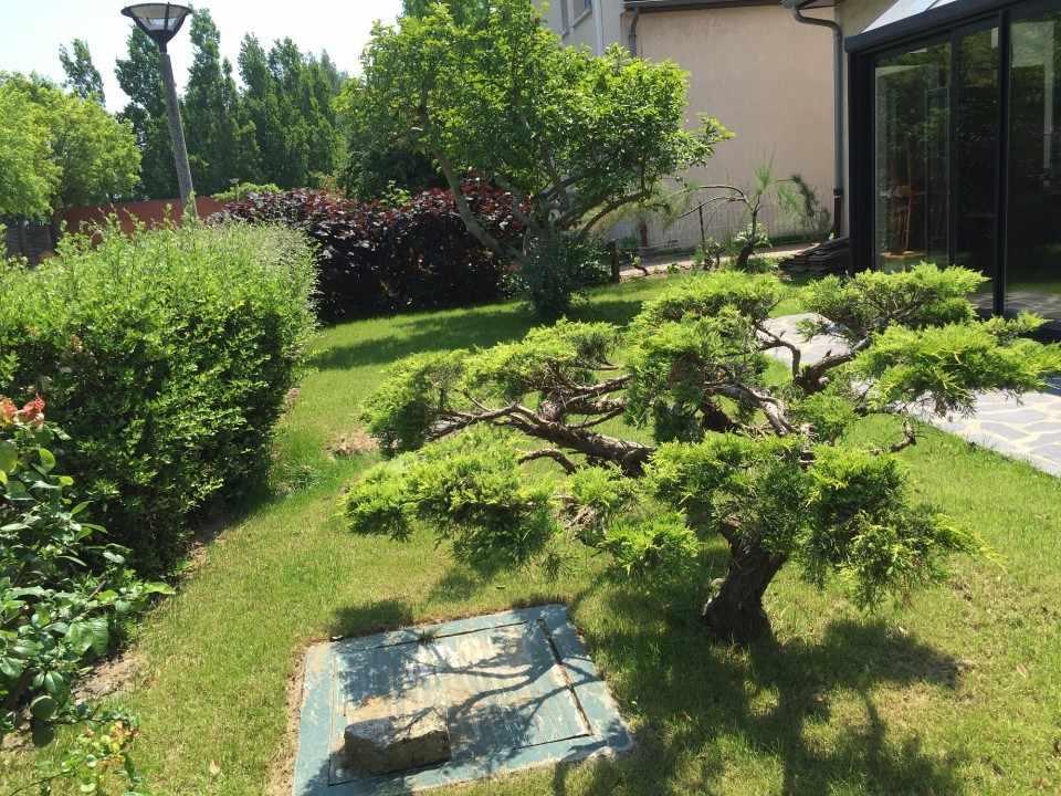 best image creation jardin gallery amazing house design. Black Bedroom Furniture Sets. Home Design Ideas